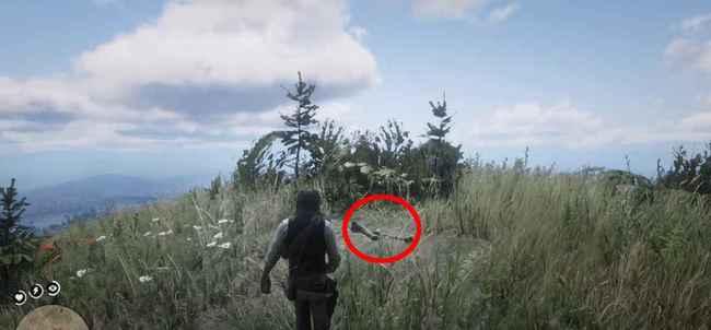 Где найти все кости динозавров в Red Dead Redemption 2