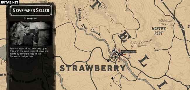 Все продавцы газет в Red Dead Redemption 2