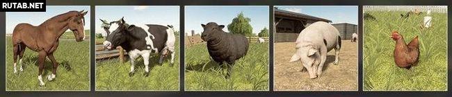 Разведение животных в Farming Simulator 19