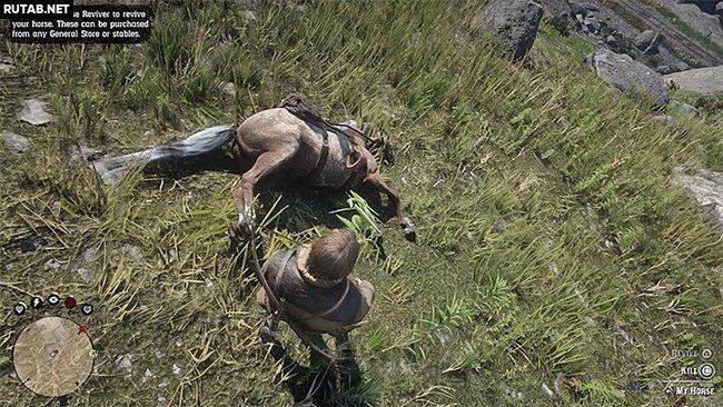 Нужно ли забирать седло после смерти лошади?